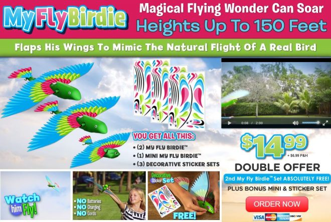 my fly birdie review