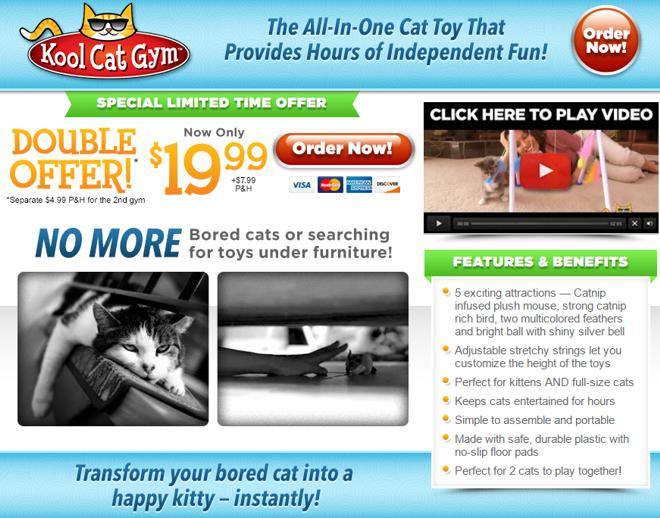 kool cat gym review