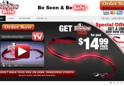 bow wow brite review