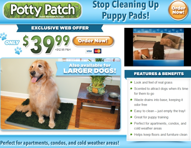 potty patch review