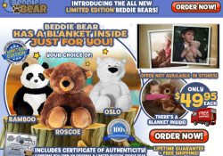 beddie bear review