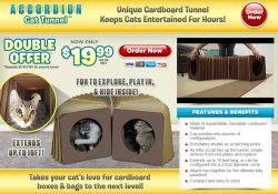 accordion cat tunnel review