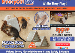 emery cat gym review